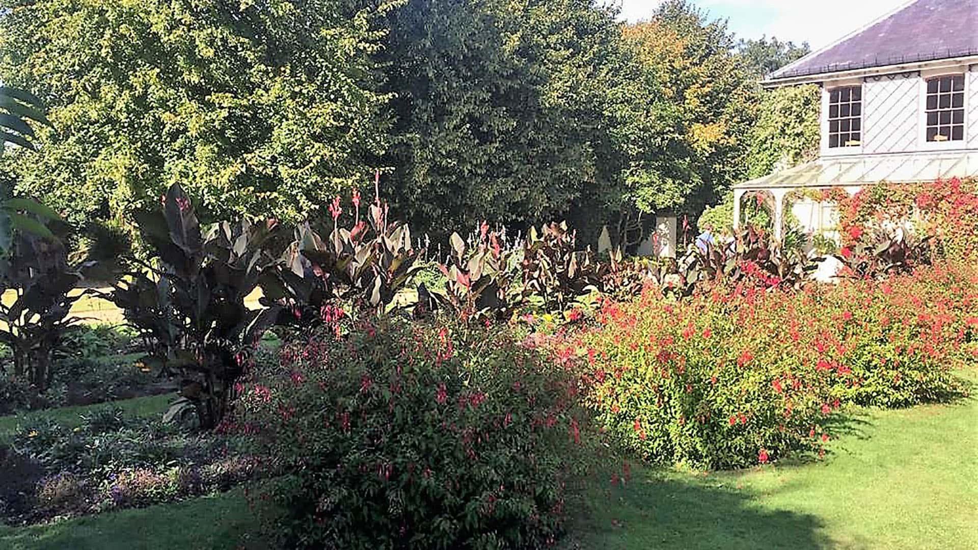 Down House Gardens