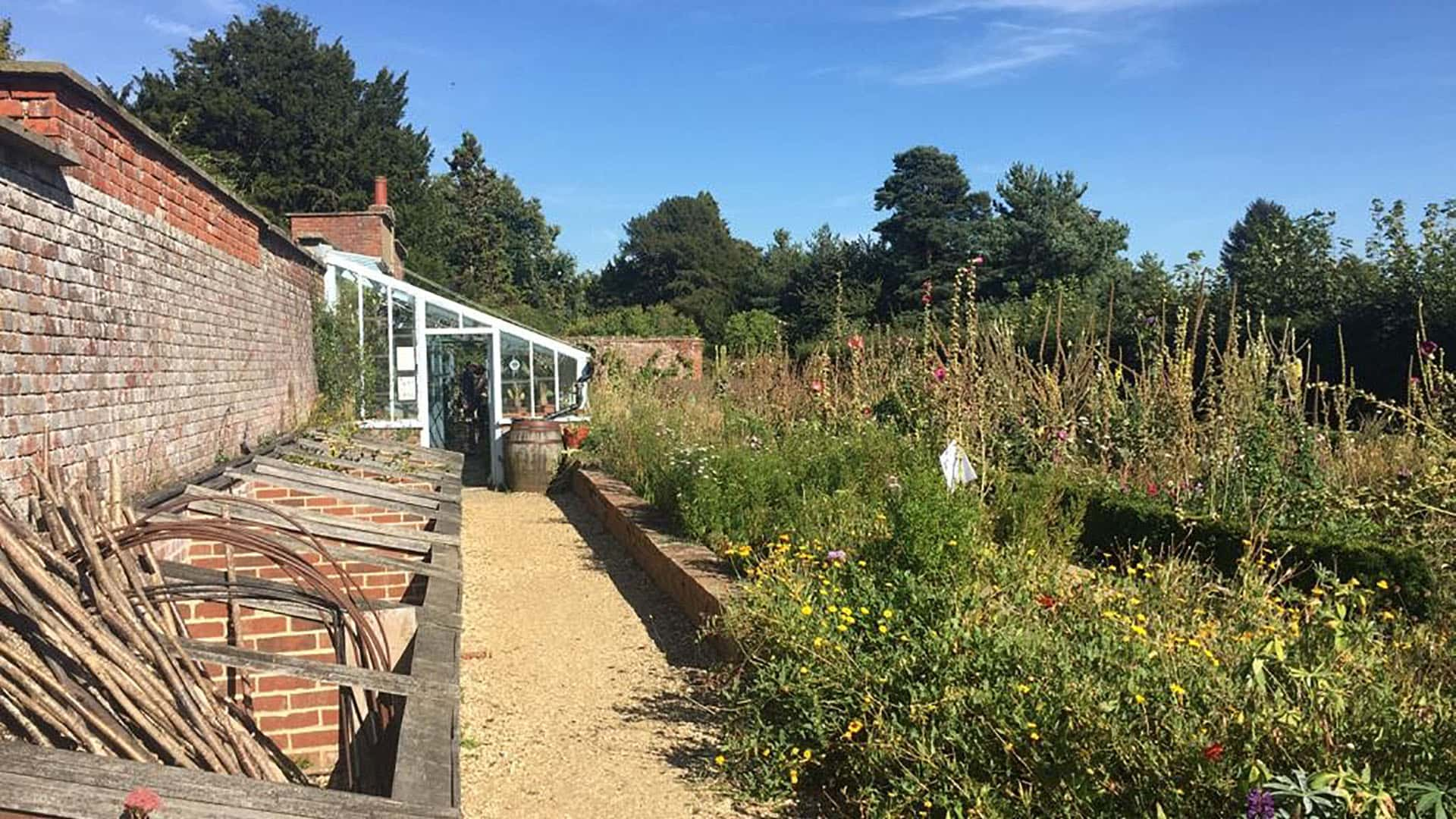 Charles Darwin's garden at Down House