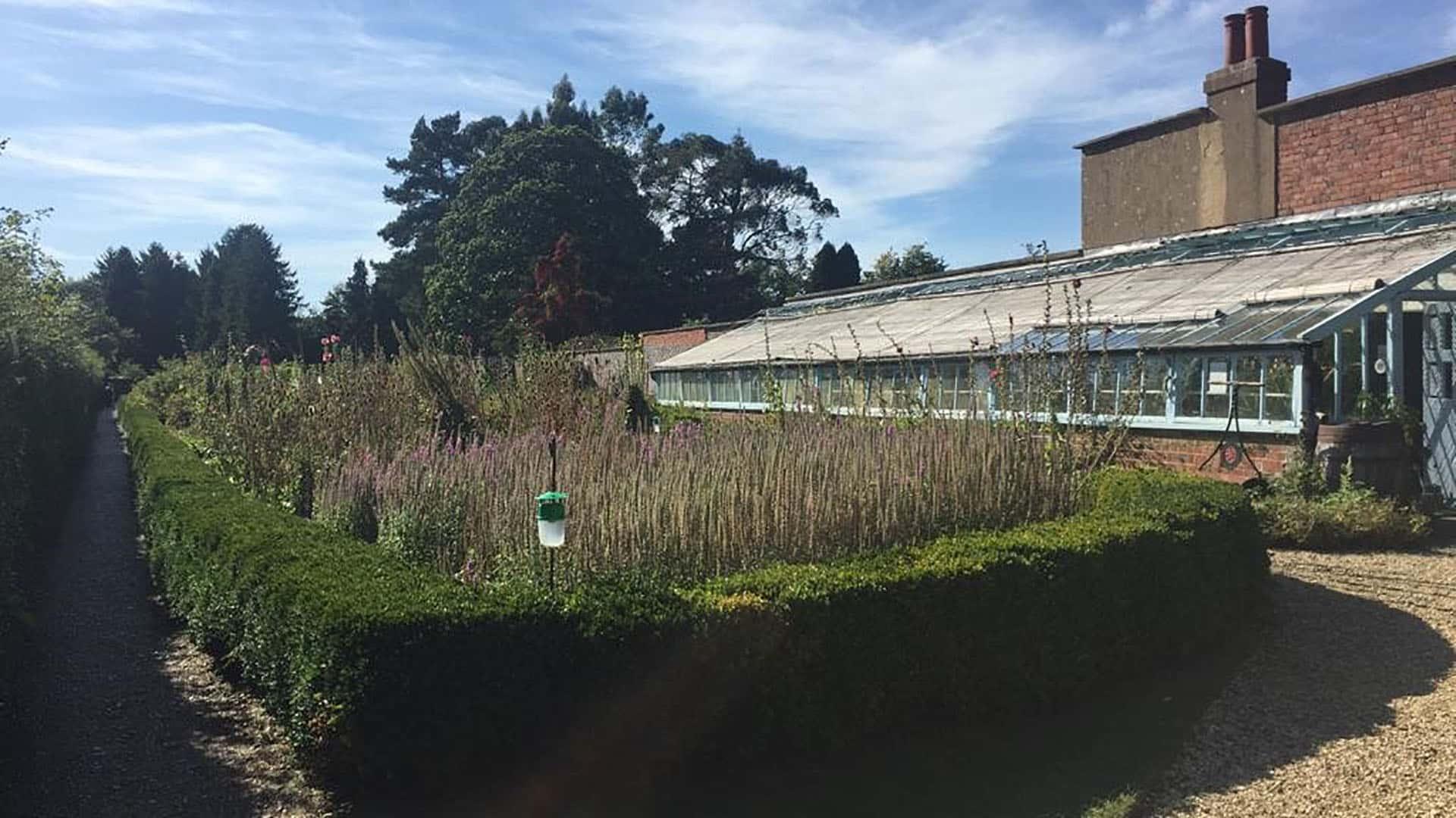 Down House – Darwin's garden