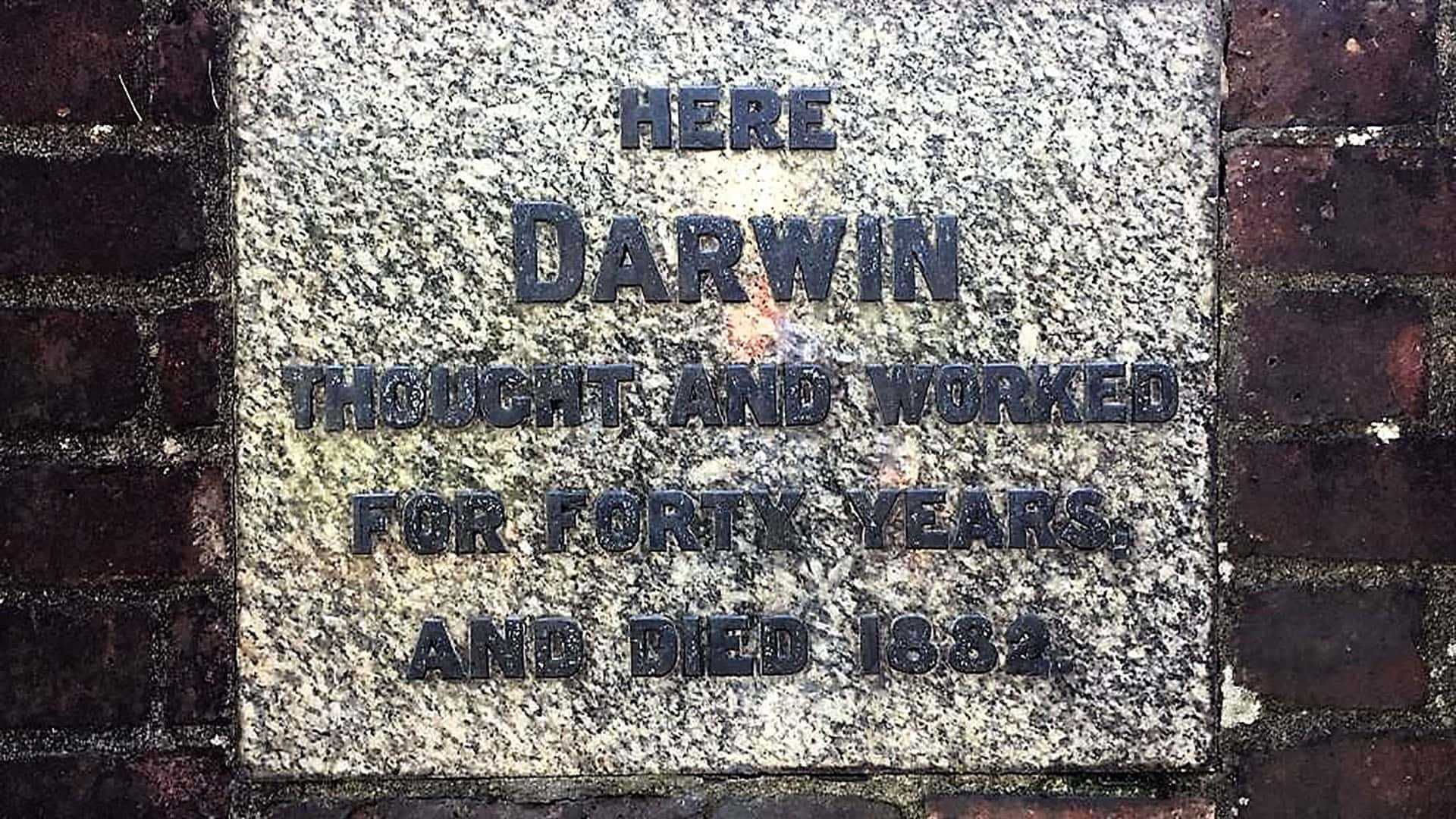 Down House Plaque Honouring Charles Darwin